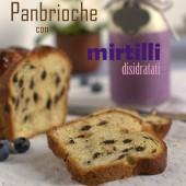 Nondisolopane - Panbrioche con mirtilli disidratati