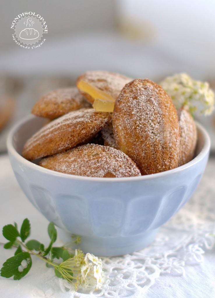 madeleines aux épices1