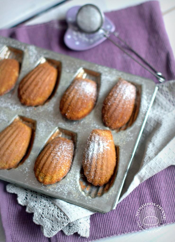 madeleines aux épices2
