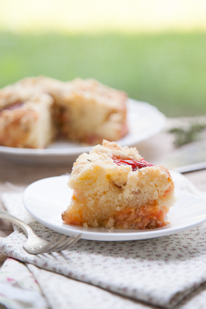 torta-di-prugne-con-crumble-di-farina-di-mandorle-4795-2