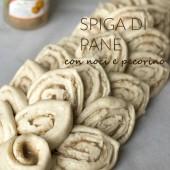 Nondisolopane - Spiga di pane con noci e pecorino